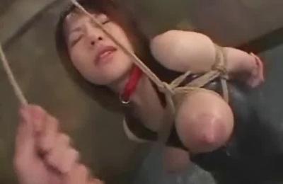 bdsm,big tits,breast milk,nipple,