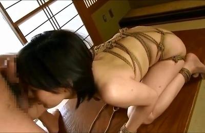 big tits,blowjobs,bondage,chubby,nana,
